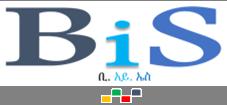 www.BiSconsultinget.com